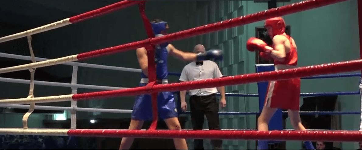 бельцкие боксеры