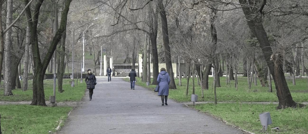 центральный парк